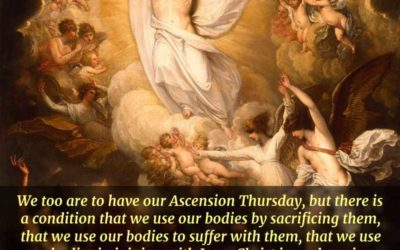 The Ascension of our Lord isa promise